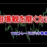 相場観を磨く方法 FXトレーダーブログ YWCトレードロジック事業部